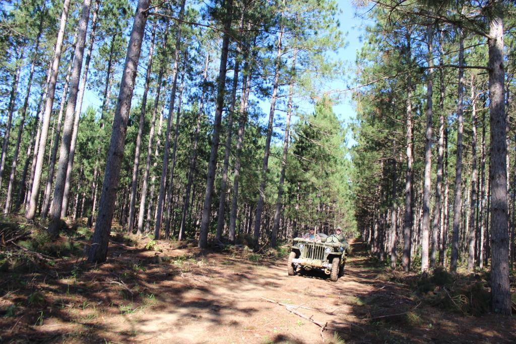 Pine-Patrol-2014-e