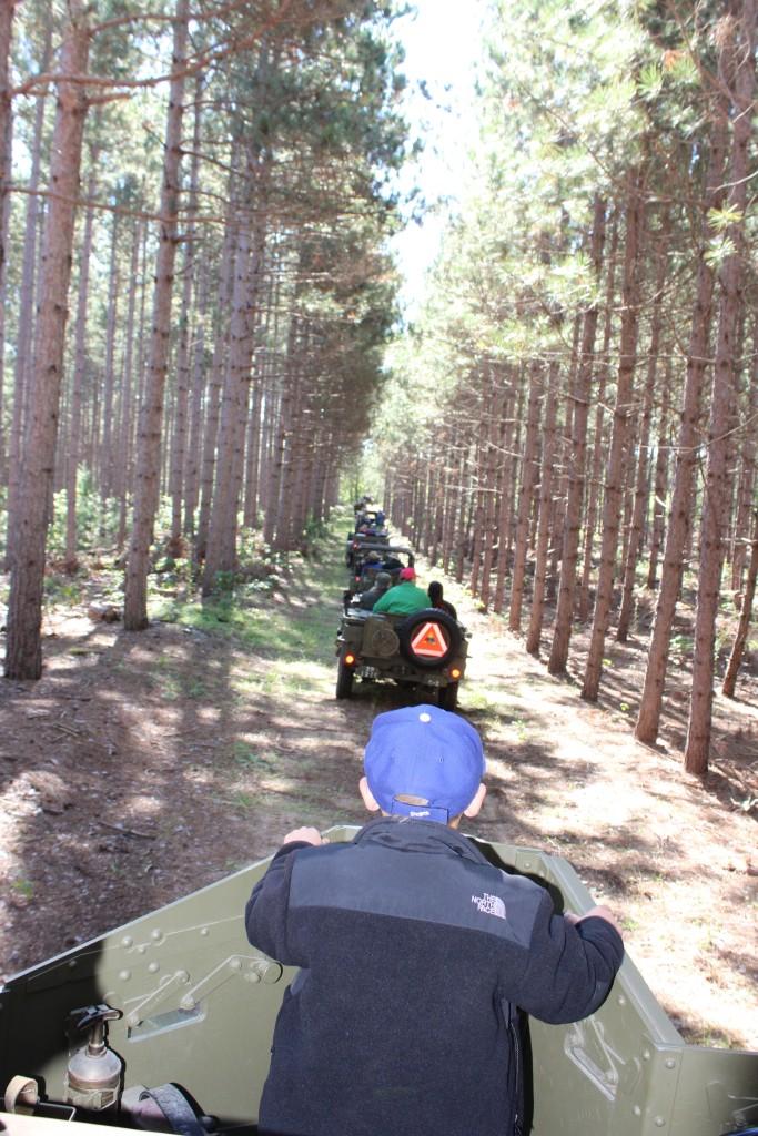 Pine-Patrol-2015-09