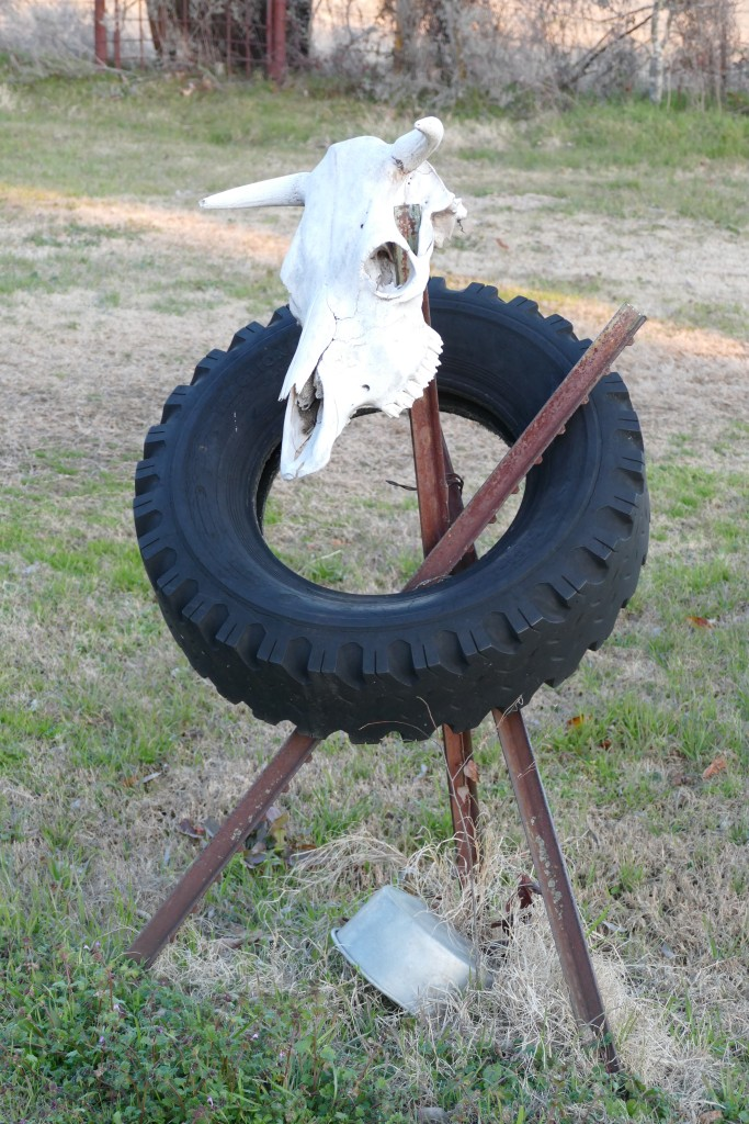 Texas yard art